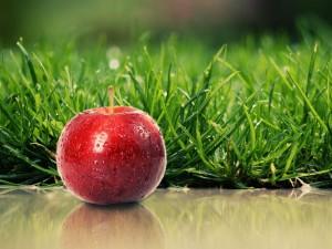 health-apple